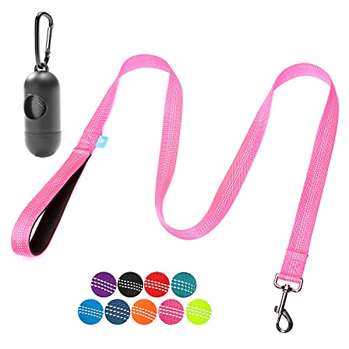 BAAPET 5 Feet Nylon Dog Leash with Triple Reflective Threads and Comfortable Padded Handle for Walking, Training Lead Small Puppy, Medium and Large Dogs or Cats (3 4   x 5 FT, Pink)
