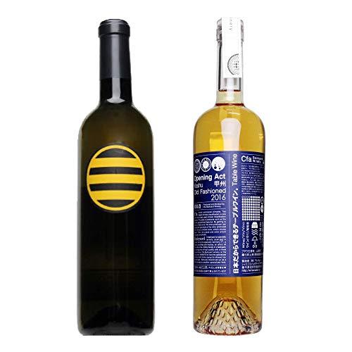 醸しオレンジワイン2本セット 辛口 甲州ワイン 日本ワイン 国産ワイン