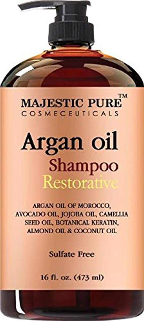 真剣に居住者フラップArgan Oil Shampoo from Majestic Pure Offers Vitamin Enriched Gentle Hair Restoration Formula for Daily Use, Sulfate Free, Moroccan Oil & Potent Natural Ingredients, for Men... [並行輸入品]