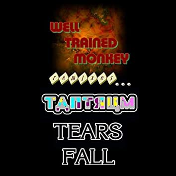 Tears Fall: Well Trained Monkey Remixes Tantrum