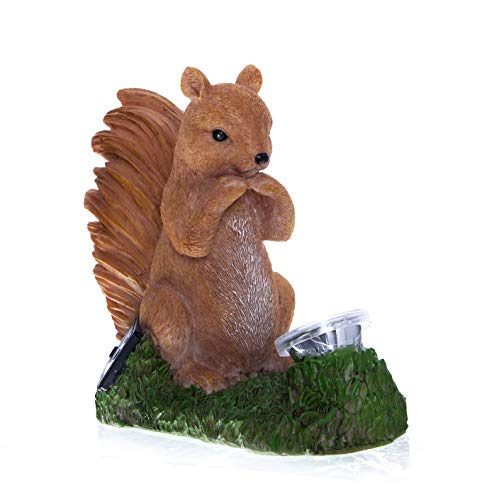 Boxer Gifts Squirrel Zombie Animal Garden Ornament | Solar Powered Statue Decoration | Glow in The...