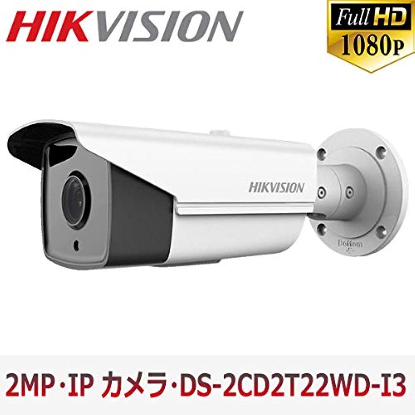 ホバークラック隠された[HIKVISION] 防犯カメラ 200万画素 EXIR IP CAMERA 2メガピクセル 防水 逆光補正 夜間30m CCTV LED POE DS-2CD2T22WD-I3 4mm 6mm