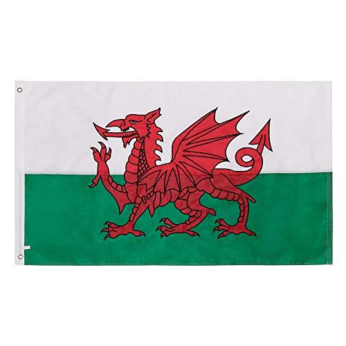Lixure Wales Flagge/Fahne Britische Flagge Top Qualität für Windige Tage 90x150cm Nationalflagge-Durable 210D Nylon Draußen/Drinnen Dekoration Flagge - Nicht billiger Polyester MEHRWEG