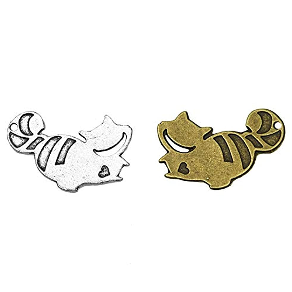 Monrocco 40pcs Cheshire Cat Alice Charm Pendants for Beads Bracelet Jewelry Making Charms 28x29mm (Antique Sliver+Antique Bronze?).