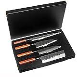 Coltello da cucina professionale da cucina giapponese con coltello salmone Sushi Sashimi Salmone Pesce Filetteting Coltelli Cutter in acciaio inox (Color : 4pcs set)