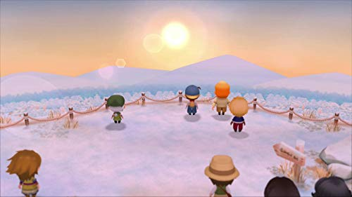 Story of Seasons Friends of Mineral Town (Nintendo Switch)