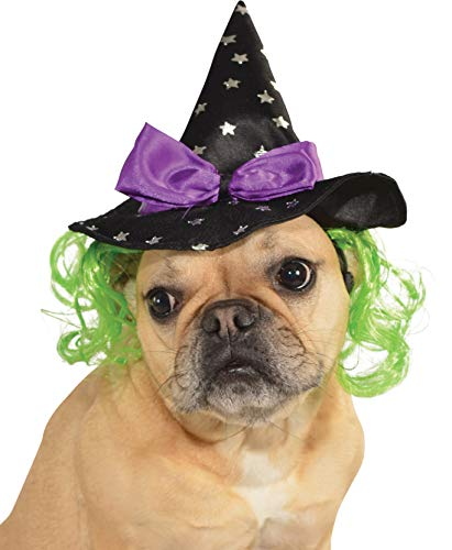 Rubie's Star Witch Hat with Hair Pet Accessory, Medium/Large