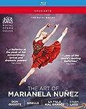 The Art Of Marianela Nunez : Don Quixote/Giselle/La Fille Mal Gardee/Swan Lake