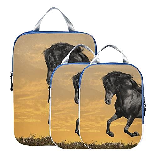Organizadores de maletas Animales Caballos Manipulación Cg Arte digital Sky Clo Bolsas de viaje de compresión Juego de cubos de embalaje expandibles para equipaje de mano, viajes (juego de 3)