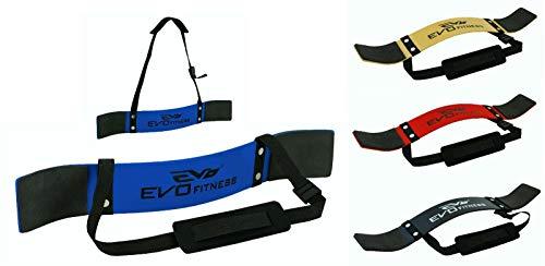 EVO Fitness Gewichtheben Arm Blaster Bizeps Isolator Support Für Gym Riemen Tücher - Blau