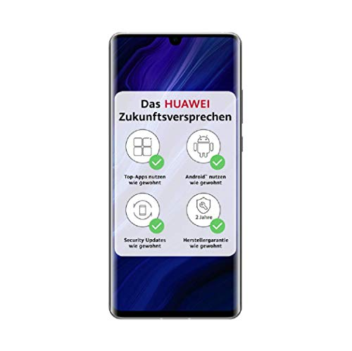 HUAWEI P30 Pro NEW EDITION Dual-SIM BUNDLE 16,43 cm-6.47 Zoll, 256 GB int. Speicher, 8 GB RAM, 40 MP + 20 MP + 8 MP Kamera,silver frost [Exklusiv inkl. microUSB auf USB-C Adapter]