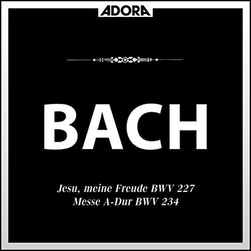 Jesu, meine Freude, BWV 227: No. 4, Denn das Gesetz des Geisters
