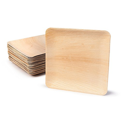 BIOZOYG Haute qualité d'assiette en Feuille de Palmier   25 pièces d'assiettes Rectangle du Feuille Palmier 25 x 25 cm   Bio jetable Vaisselle pour fête Rapidement décomposable