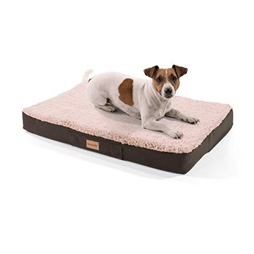 brunolie Balu kleines Hundebett in Beige, waschbar, orthopädisch und rutschfest, kuscheliges Hundekissen mit atmungsaktivem Memory-Schaum, Größe S (72 x 50 x 8 cm)