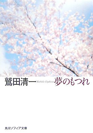 夢のもつれ (角川ソフィア文庫)の詳細を見る