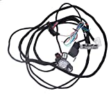 Goodbest New Conversion Harness for Acura Integra 1994-2001 Honda Civic Civic Del Sol 1992-1997 w/K swap K20A K20A2 K24
