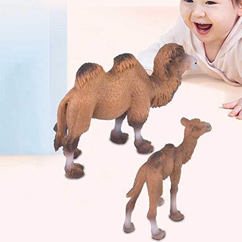 Tiermodell Spielzeug 2 Stücke Miniatur realistische Wissenschaft Kunststoff Tier Kamel Modell Abbildung Simulation Kamel Tier pädagogisches Modell Spielzeug für Kinder