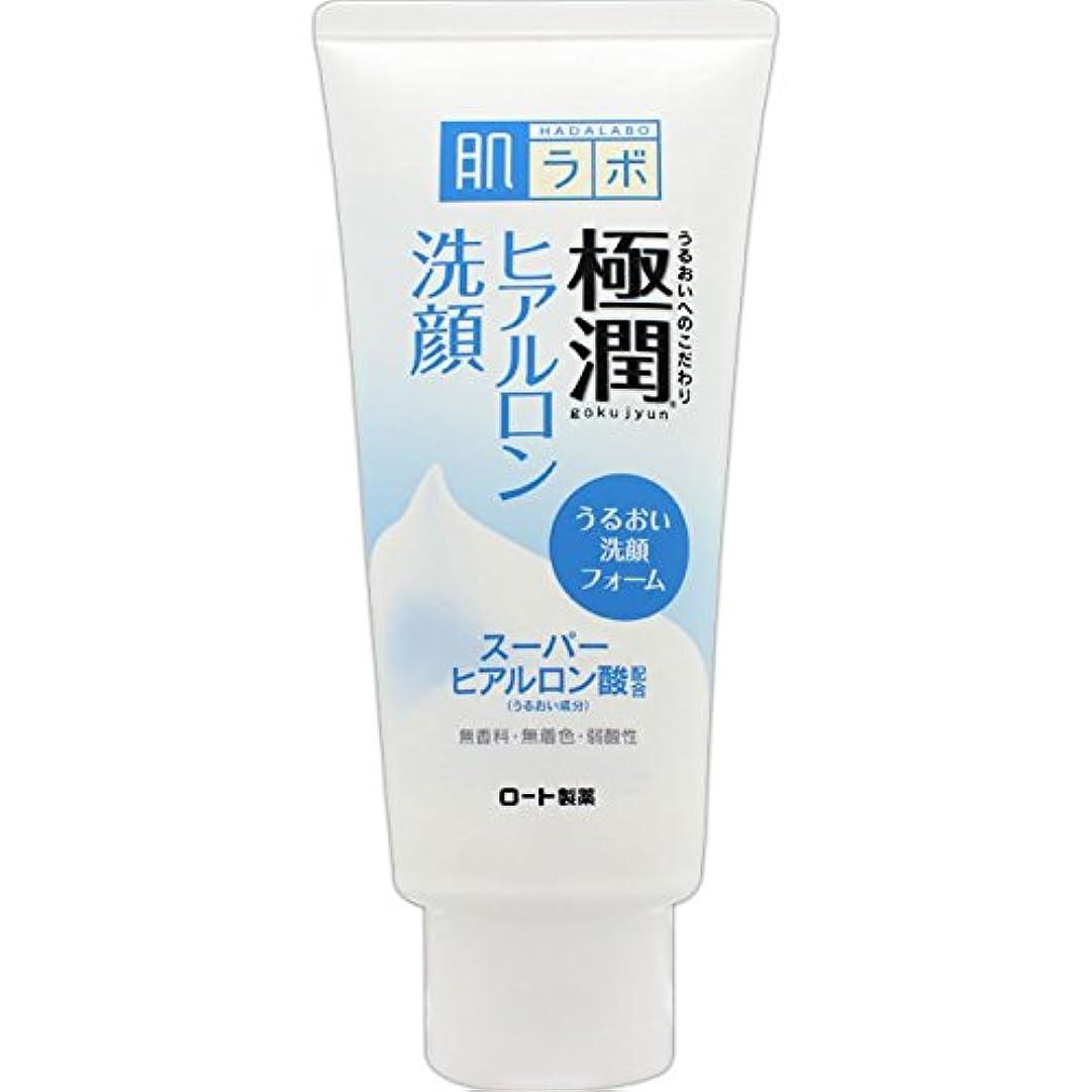 アドバイス押す可能にする肌ラボ 極潤 ヒアルロン洗顔フォーム スーパーヒアルロン酸&吸着型ヒアルロン酸をW配合 100g