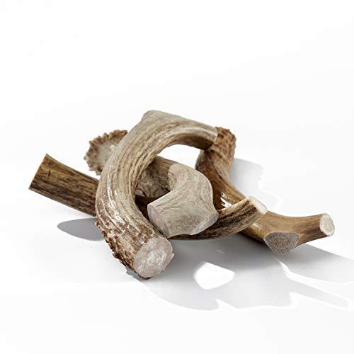 Buck Bone Organics Deer Antler Dog Bones, Premium Grade A - Natural Dog Treat, Made in Montana (1 LB Bag)
