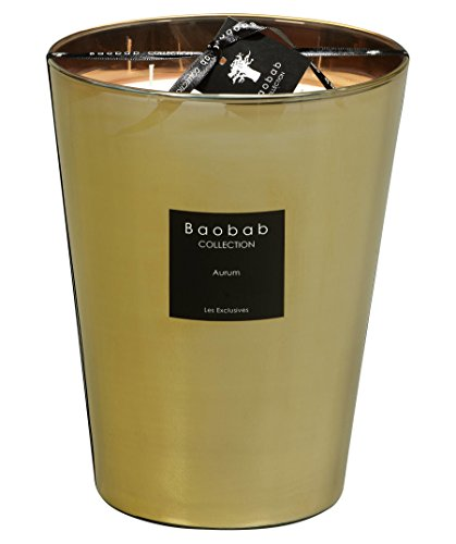 Baobab Velas de cristal, color dorado, 24 x 10 cm