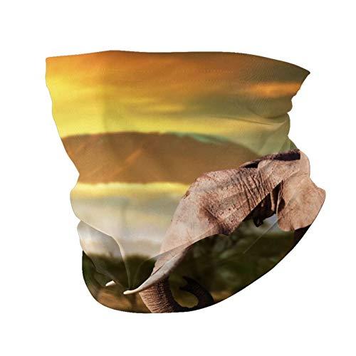Variety Head Scarf Fashion Face Mask Elephant Trees Africa Sun-Proof Fashion Bandana Headwear Face towel for Men and Women