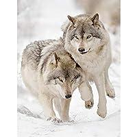 大人のためのパズル2000ピースジグソーパズル大人のための2000ピース子供2匹のオオカミ大きなパズルゲームおもちゃギフト