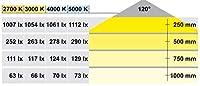 LED2043 12V 4000K 5m (昼白色)