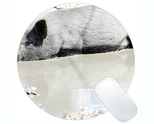 Yanteng Animal Art Mousepad, Animal Impreso con un Adorable Cerdito