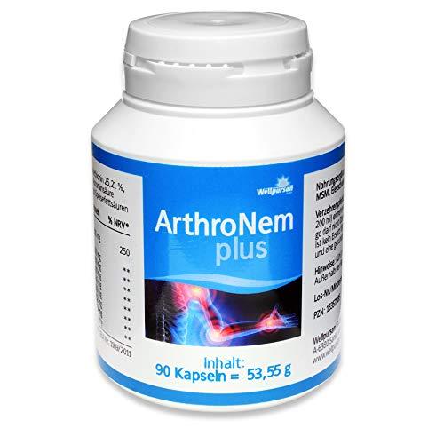 Wellpursan ArthroNem plus Kapseln, bei Arthrose und Gelenkschmerzen, Gelenkkapseln hochdosiert mit MSM, für Gelenke Knorpel