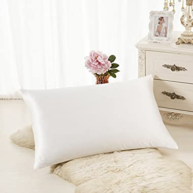 ALASKA BEAR Natural Silk Pillowcase, Hypoallergenic, 19 momme, 600 thread count 100 percent Mulberry Silk, King Size with hidden zipper (1, Ivory(Natural Undyed White))