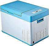 Refrigerador de compresión portátil para coche, mini refrigerador (23L) | Alimentos y Bebidas | Refrigerador de picnic de camping
