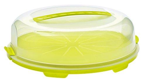 Rotho Fresh flache Tortenglocke, Kunststoff (BPA-frei), grün / transparent, (35,5 x 34,5 x 11,6 cm)