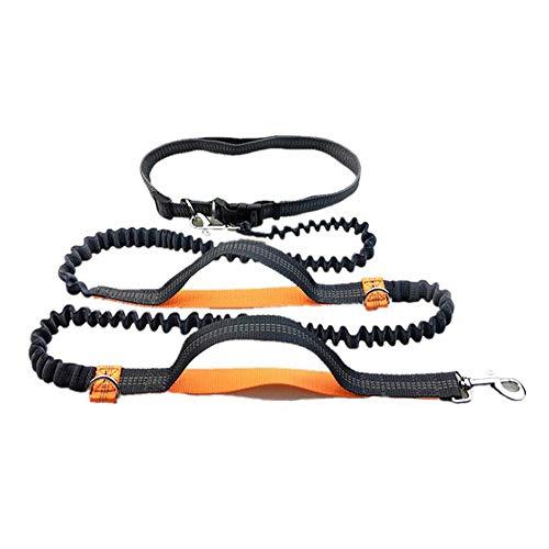 GLEADING Correa Retráctil para Usar Manos Libres para Perros con Doble Cuerda Elástica para Perros, Cinturón Ajustable,...