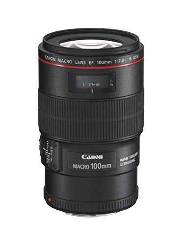 Canon単焦点マクロレンズEF100mmF2.8LマクロISUSMフルサイズ対応