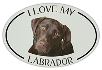 Lancy s Artwork Oval Dog Breed Picture Car Sticker - I Love My Labrador  Chocolate Lab  - Sticker Graphic - Auto Wall Laptop Cell Truck Sticker for Windows Cars Trucks Tool Boxes laptops