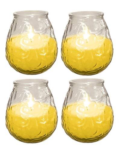 Ram - Candela alla citronella per Ambienti Esterni, con Barattolo di Vetro, Repellente per Insetti, Confezione da 4