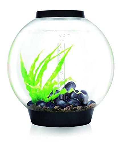 OASE biOrb CLASSIC 60 LED Kugel-Aquarium, 60 Liter - Aquarien Komplett-Set mit LED Beleuchtung und patentiertem Filter-System, Acryl-Becken in Schwarz