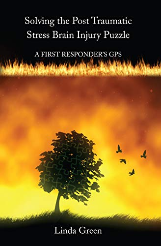 Solving the Post Traumatic Stress Brain Injury Puzzle: A First Responders\' GPS (English Edition)