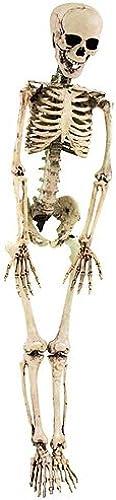 lo último Europalms Ingresos 61616 Esqueleto Esqueleto Esqueleto blanco Halloween  ofreciendo 100%