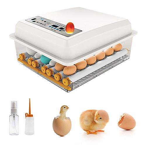 InLoveArts Incubadora de Huevos con volteo y eclosión automáticos, incubadora de Huevos para gallinas, Patos, Gansos, codornices, Uso doméstico, etc. Iluminación LED de Alta eficiencia, 16 Huevos