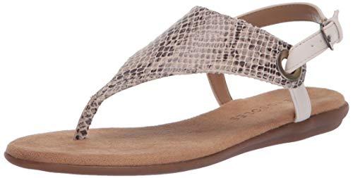 Aerosoles Women's Thong Sandal Flip-Flop, TAN Snake, 10.5 B (M)