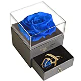SWEETIME Blue Rose Gift Box - Enchanted Real Rose with Ruby Rose Brooch, Eternal Flower Rose, Handmade Preserved Rose, Forever Blue Rose Gift for her on Mother's Day, Birthday.
