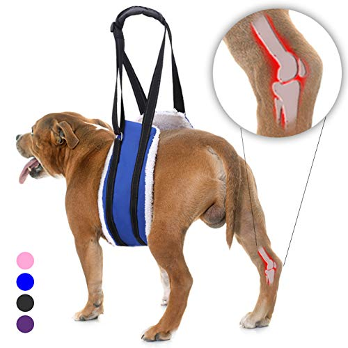 Bolux Portable Dog Sling Rear Legs - Dog Lift Harness for Back Legs, Adjustable Hip Support Harness...