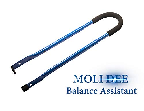 MOLI DEE Children Cycling Bike Safety Trainer Handle Balance Push Bar (Blue)