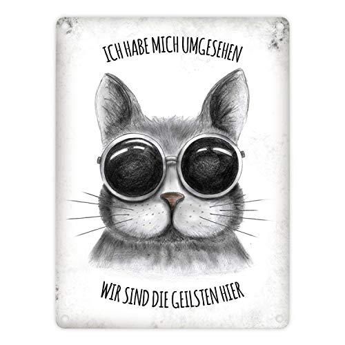trendaffe - Metallschild mit Katze Motiv und Spruch: Ich Habe Mich umgesehen - wir sind die geilsten Hier