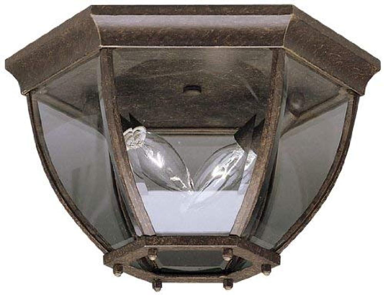 Kichler 9886TZ Outdoor Ceiling 2-Light, Tannery Bronze