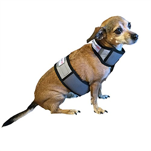 CoolerDog Dog Cooling Vest and Cooling Collar - Ice Vest for Dogs X-Small (15' to 18' Girth)
