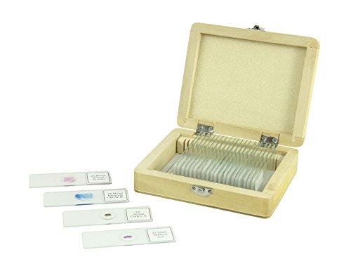 Celestron 822488 - Muestras para microscopios