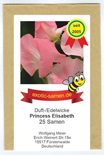 Duftwicke - Edelwicke - Bienenweide – Princess Elisabeth – bis 180 cm - 25 Samen