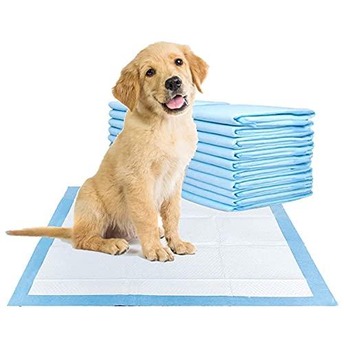 ShopHut - Pastiglie per addestramento cuccioli, tappetini per animali più giovani, pannolini per cani e gatti, con elevata assorbenza, confezione da 50